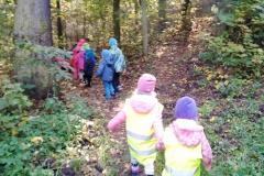 Návštěva lesa